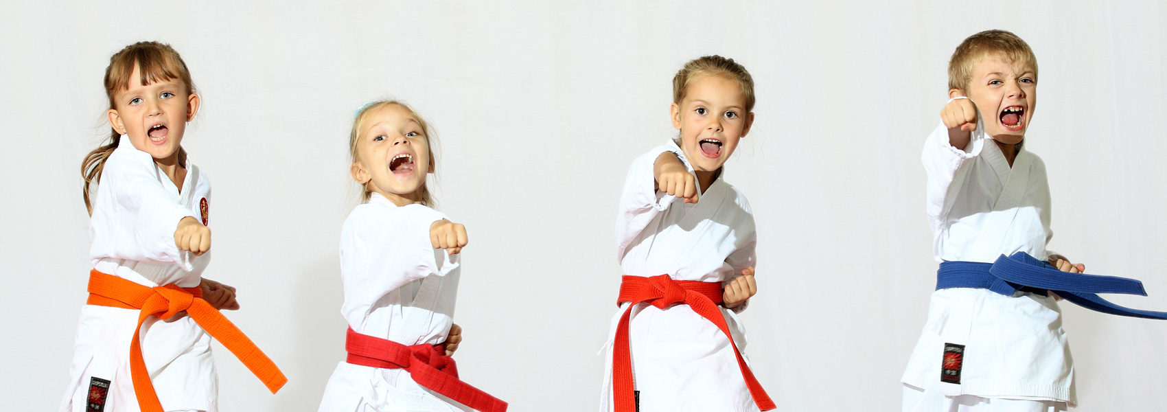 Contact discovery martial arts academy